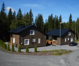 Himos Villa Nummenranta 1