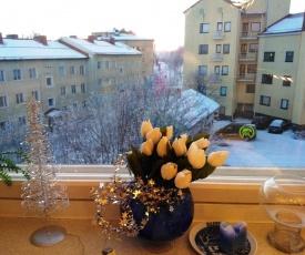 Koskikatu Apartment