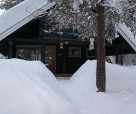 Holiday Home Metso / aspen