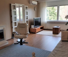 Guesthouse Aholin
