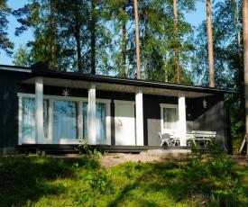 Villa Terveenniemi